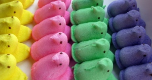 Peeps.  Picture by Kate Ter Haar