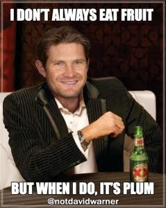 Shane Watson meme 2